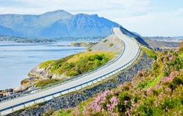 Khám phá những con đường đẹp như mơ bên biển