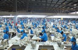 Hàng Việt Nam đứng thứ hai về đóng thuế vào Mỹ