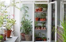 10 ý tưởng biến ban công thành khu vườn nhỏ xinh