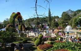 300.000 khách du lịch đến Đà Lạt dịp Tết Đinh Dậu