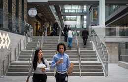 Các công ty Canada thu hút nhân tài từ Mỹ