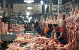 Cao điểm 10 ngày kiểm soát nguồn thịt lợn vào TP.HCM