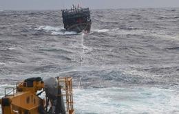 Lai dắt tàu cá cùng 7 ngư dân bị nạn trên biển về đảo Lý Sơn an toàn