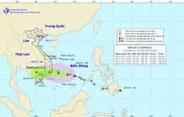 Thủ tướng ra công điện chỉ đạo ứng phó khẩn cấp bão số 14 và mưa lũ
