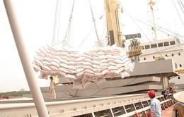 Thêm nhiều hợp đồng nhập khẩu gạo của Việt Nam trong quý II