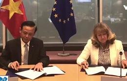 Việt Nam và châu Âu thỏa thuận về gỗ có nguồn gốc hợp pháp