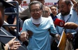 Cựu Tổng thống Peru Fujimori công khai xin lỗi người dân