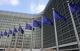 13 người nhiễm khói độc tại tòa nhà trụ sở Hội đồng châu Âu