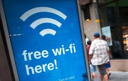 22.000 người vô tình đồng ý... cọ rửa nhà vệ sinh để dùng wifi miễn phí