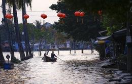 Phố cổ Hội An trở lại yên bình sau trận lụt nặng