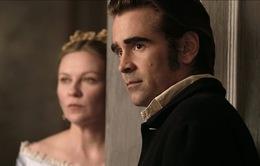 The Beguiled: Câu chuyện tinh tế về tình yêu, bản năng và... cái chết