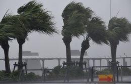 Nhật Bản: 18 người chết do mưa lũ, hơn 30 người mất tích