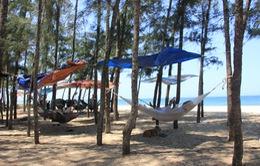 Quảng Ngãi: Cả làng kéo nhau ra rừng dương tránh nắng