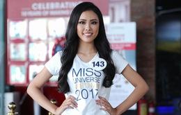 Lộ diện 35 người đẹp đầu tiên vào vòng bán kết Hoa hậu Hoàn vũ Việt Nam 2017