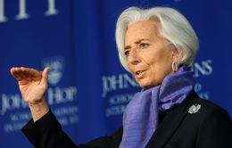 Tổng Giám đốc IMF: Vai trò chủ nhà của Việt Nam tại APEC 2017 rất thành công