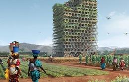 Tòa nhà lưu động giúp thúc đẩy nông nghiệp châu Phi