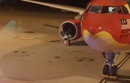 Chim lao vào động cơ, máy bay của AirAsia hạ cánh khẩn cấp