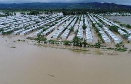 Bão Kai-Tak gây thiệt hại nặng nề tại Philippines