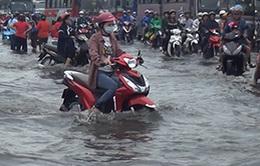 Giao thông TP.HCM hỗn loạn trong mưa