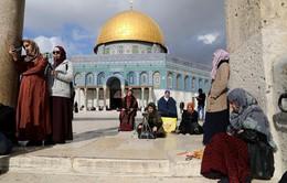 HĐBA LHQ xem xét nghị quyết bác bỏ quyết định của Mỹ về Jerusalem