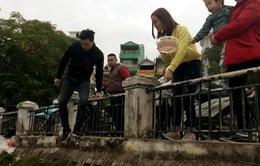 Nhiều người nhầm lẫn giữa việc thả cá tiễn ông Táo và việc phóng sinh
