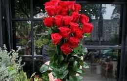 Hoa hồng lạ dài cả mét, giá nửa triệu khan hàng cận Valentine
