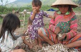 Lâm Đồng: Đầu tư ổn định đời sống cho dân di cư tại Tiểu khu 179