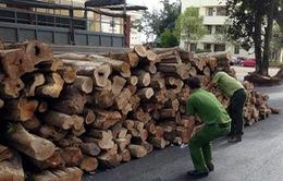 Đăk Lăk bắt giữ xe tải chở hơn 10m3 gỗ lậu