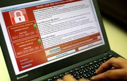 Nhiều cơ sở giáo dục tại Trung Quốc bị mã độc tấn công