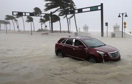 """Siêu bão Irma """"trút cuồng nộ"""" ở Florida, ít nhất 4 người thiệt mạng"""