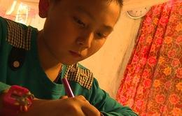 Tinh thần hiếu học của cậu bé mồ côi cha mẹ