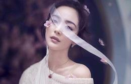Dương Mịch đẹp nao lòng trong bộ ảnh mới