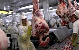 Brazil và vụ bê bối thực phẩm tồi tệ nhất lịch sử hiện đại