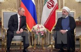 Iran và Nga đề cao ý nghĩa của thỏa thuận hạt nhân với nhóm P5+1