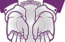 Bắt 2 đối tượng gây ra 25 vụ trộm cắp tài sản