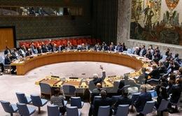 LHQ không gia hạn điều tra vũ khí hóa học tại Syria