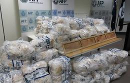 Australia thu giữ lượng ma túy đá kỷ lục