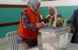 Palestine tiến hành bầu cử các hội đồng địa phương ở Bờ Tây