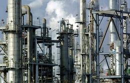 Tập đoàn hóa chất và dầu khí hàng đầu Trung Quốc bị điều tra vì hối lộ