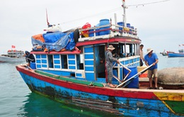 Khánh Hòa: Tăng chế tài xử phạt tàu cá hoạt động vi phạm