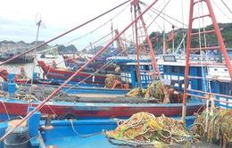 Hà Tĩnh, Nghệ An, Thanh Hóa, Quảng Ninh tích cực ứng phó với bão số 2