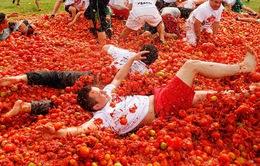 Café Sáng với VTV3: Xả stress với lễ hội ném cà chua ở Chile