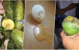 Vĩnh Phúc: Xử lý nghiêm vụ đưa thực phẩm hư hỏng vào trường tiểu học