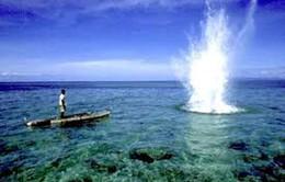 Phú Yên: Bắt 4 đối tượng khai thác hải sản bằng thuốc nổ