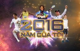 """Chương trình Thể thao xuân Đinh Dậu 2017: """"2016 – Năm của tôi"""""""