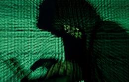 Người dùng cần làm gì để phòng chống mã độc Petrwrap?