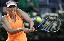 Búp bê Sharapova nói lời chia tay với Wimbledon