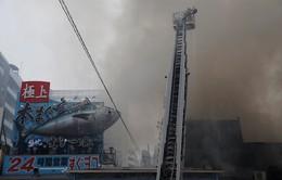 Cháy lớn ở chợ cá lớn nhất thế giới tại Nhật Bản