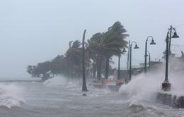 Bão Irma gây thiệt hại đáng kể tại các vùng lãnh thổ thuộc Pháp