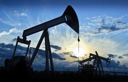 Nga và Saudi Arabia gia hạn cắt giảm sản lượng dầu mỏ